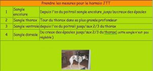 Mesure JTT